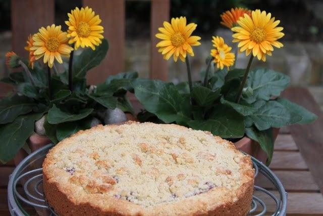 Raspberry-Rhubarb Ripple Tea Cake