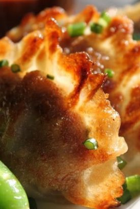 Chinese Pork and Ginger Dumplings (aka Potstickers!)