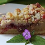 Peanut Butter and Jelly Tart (or Bars)