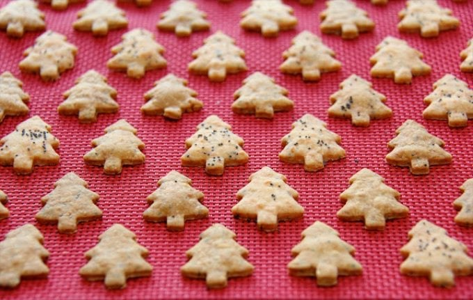 These Cheddar and Poppy Seed Crackers are, not only adorable, but incredibly tasty seasonal treats. Wrap them up in a gift bag and surprise someone!