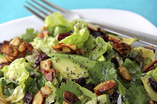Cranberry-Avocado Salad with Sweet White Balsamic Vinaigrette -  Once you try this delicious salad you'll find yourself craving it again and again! It's bright, fresh and beyond versatile.