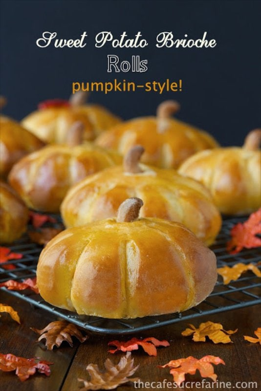 Pumpkin Style Sweet Potato Brioche Rolls - a delicious, seasonal, fun variation on a super dinner roll recipe.