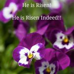 He is Risen, He is Risen Indeed!! Easter Greetings from The Café