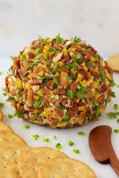 Vertical picture of a bacon jalapeno cheddar cheese ball with crackers on a white background