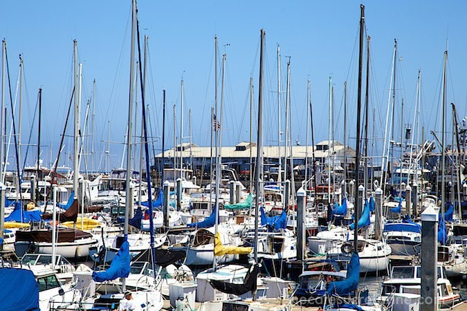 Monterey - sailboat harbor