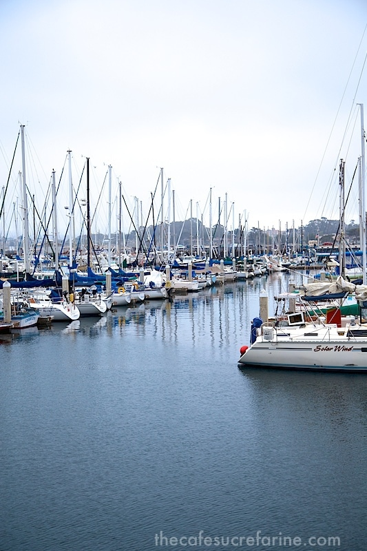 Monterey sailboats in harbor