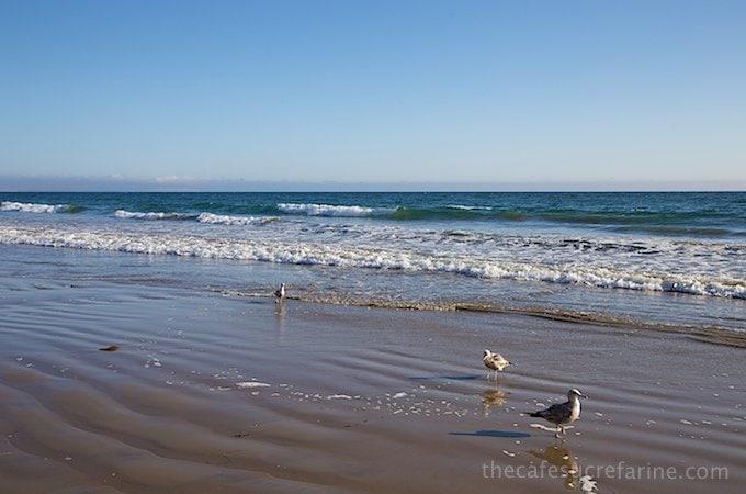 California Coast Road Trip - Part 2