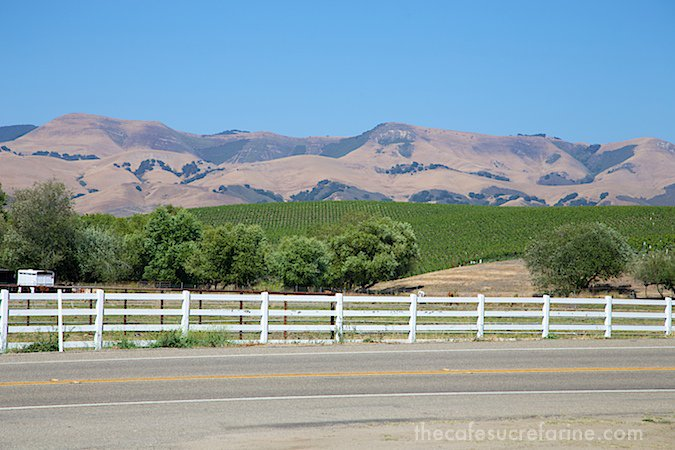 California Coast Road Trip - Part 2 - SLO Vineyards