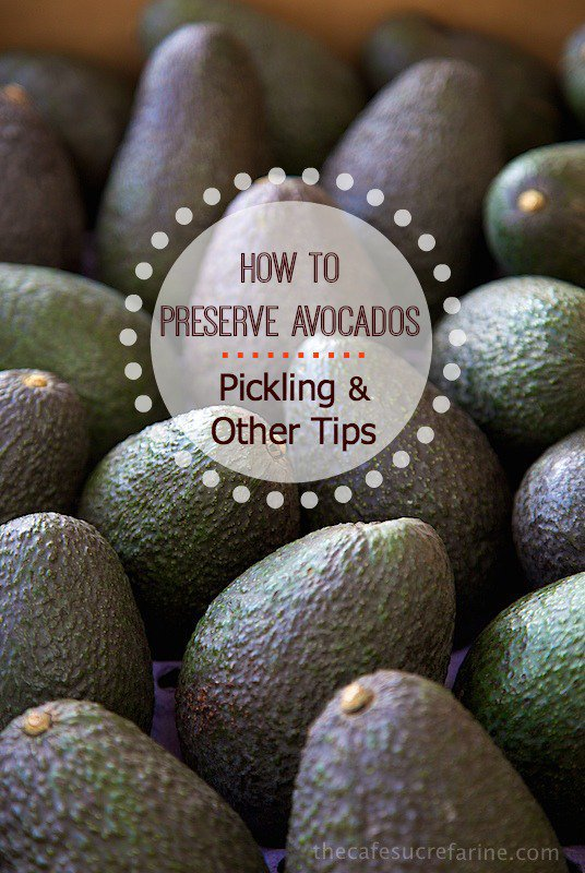 Preserving Avocados - Pickling and other tips on extending the shelf life of the wonderful avocado.