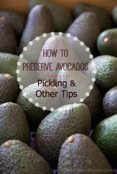 How to Preserve Avocados: Pickling and Other Tips