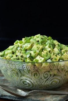 Avocado Salsa - kind of like a grown up guacamole. Loaded with delicious fresh flavor and texture, the fabulous avocados really shine!