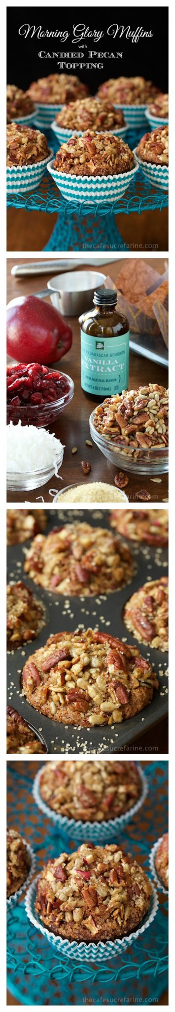 "Morning Glory Muffins with Candied Pecan Topping - this is one of those ""never-fail"" recipes! The muffins always come up tall and pretty. I love that they're so delicious and loaded with healthy ingredients at the same time. Oh, and the candied pecan topping is totally amazing!"