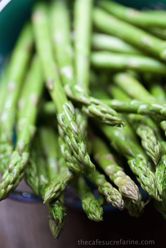 Extreme close up picture of asparagus