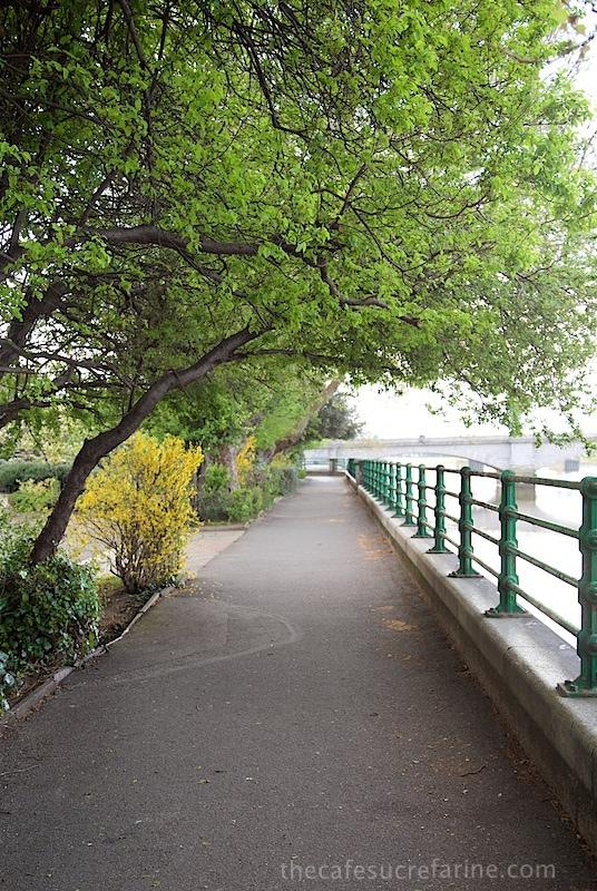 The River Thames - London Spring - Fulham Park, London, UK