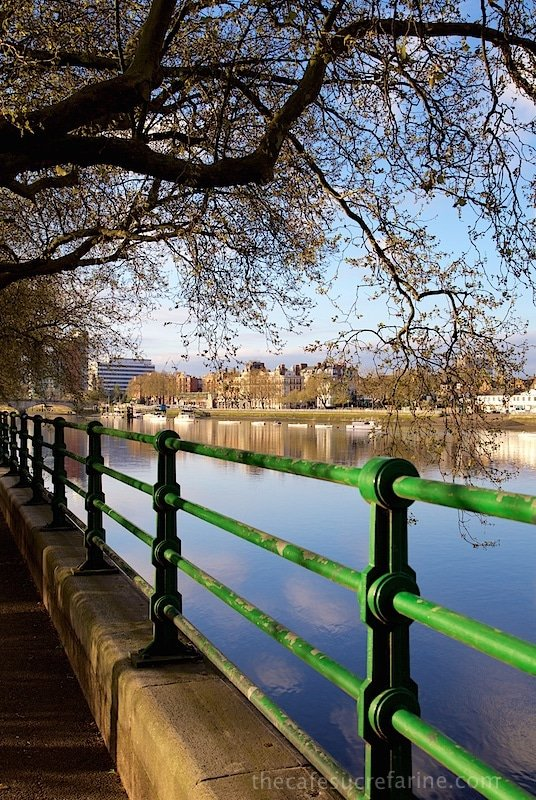 London Spring - The Thames and Fulham Park, London, UK