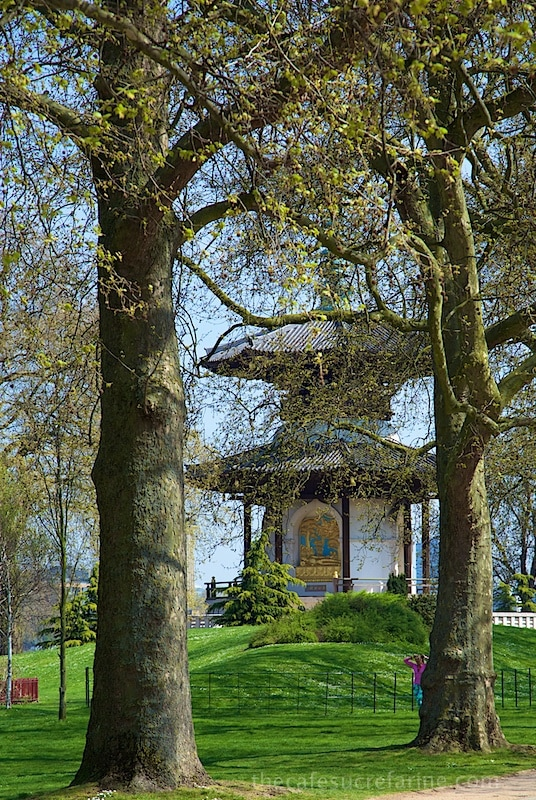 London Spring - Battersea Park, London, UK