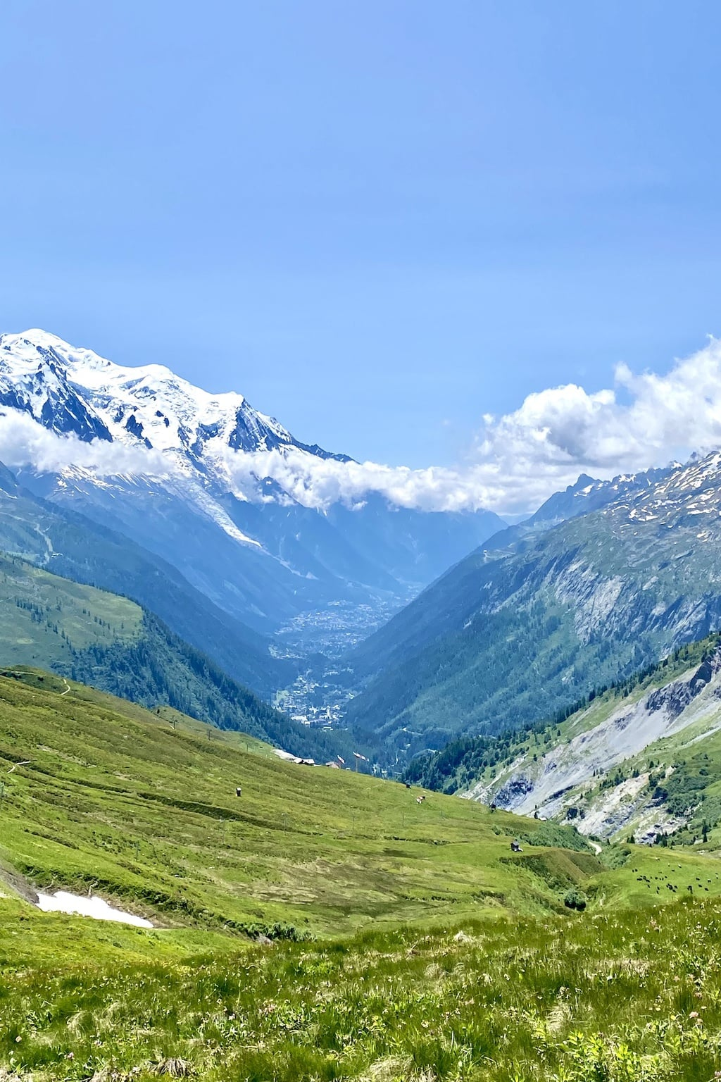 Vertical panoramic photo of Mount Blanc in France.