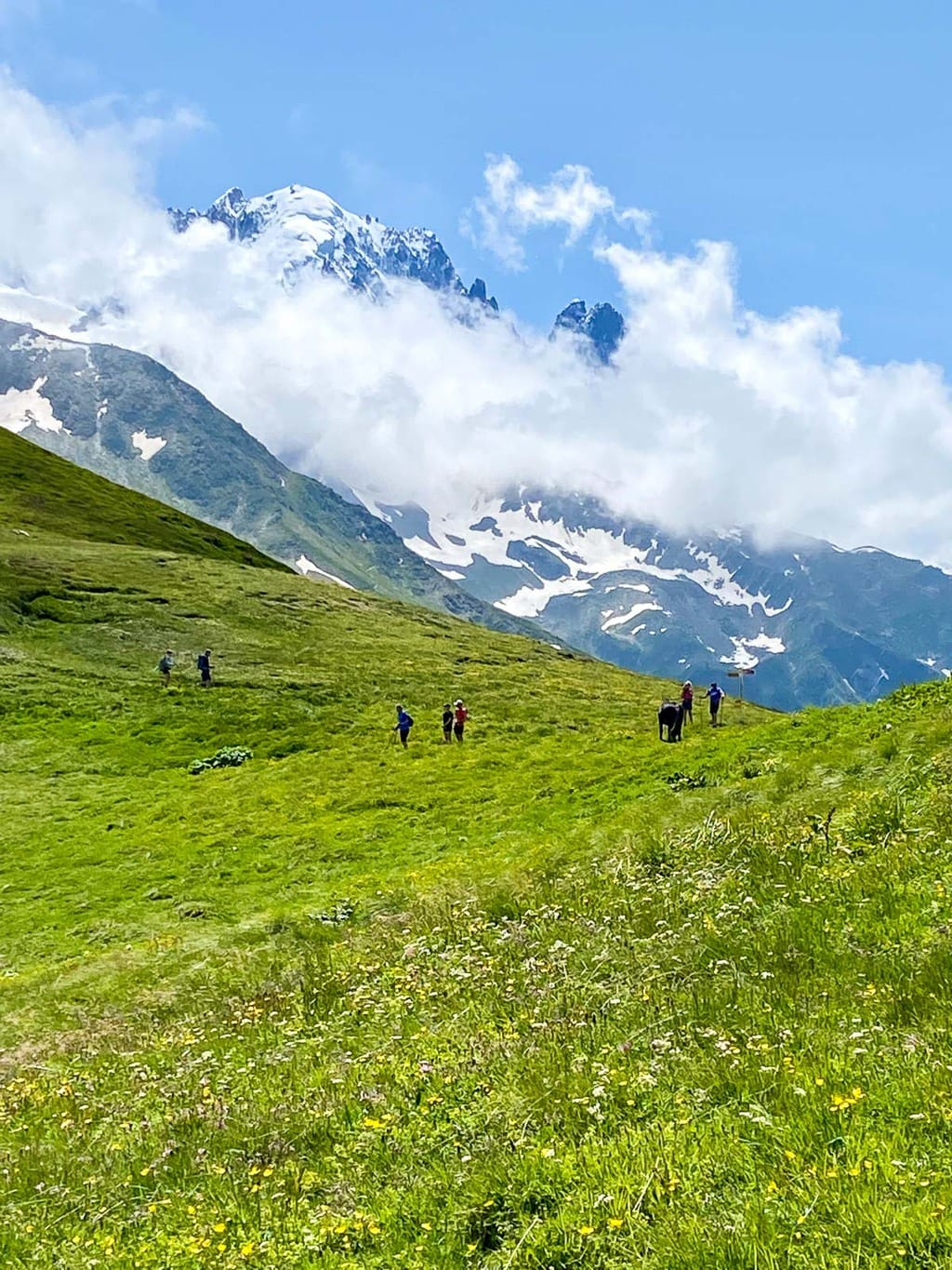 Vertical photo of hikers walking the Alpine meadow trails near Argentiere, France with Mount Blanc in the background.