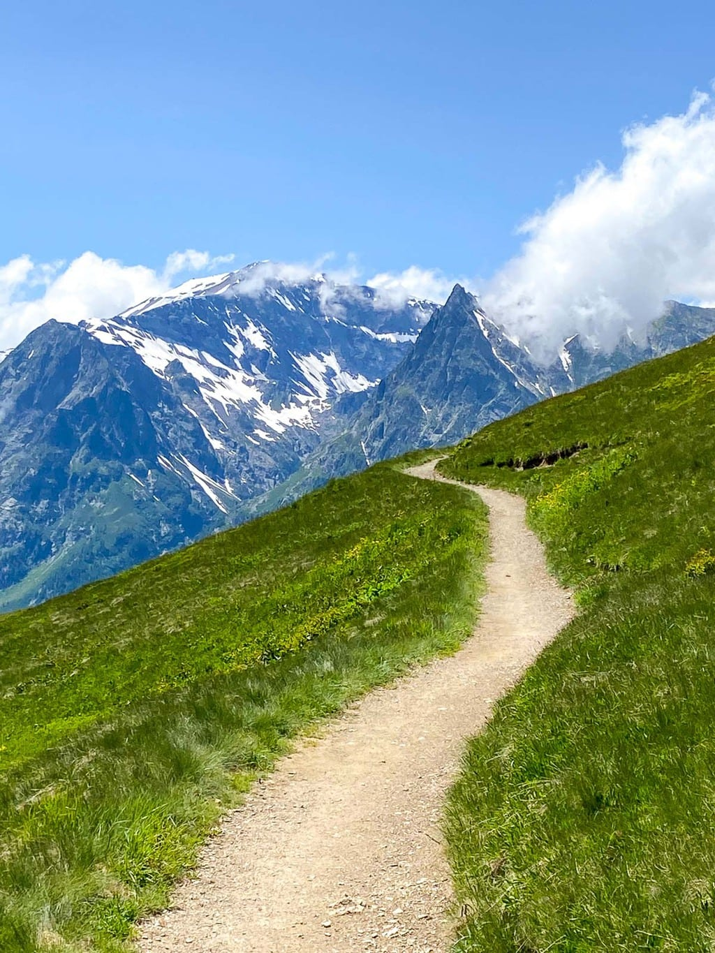 Vertical photo of Alpine hiking trails near Le Tour, France with the mountains surrounding Mount Blanc in the background.
