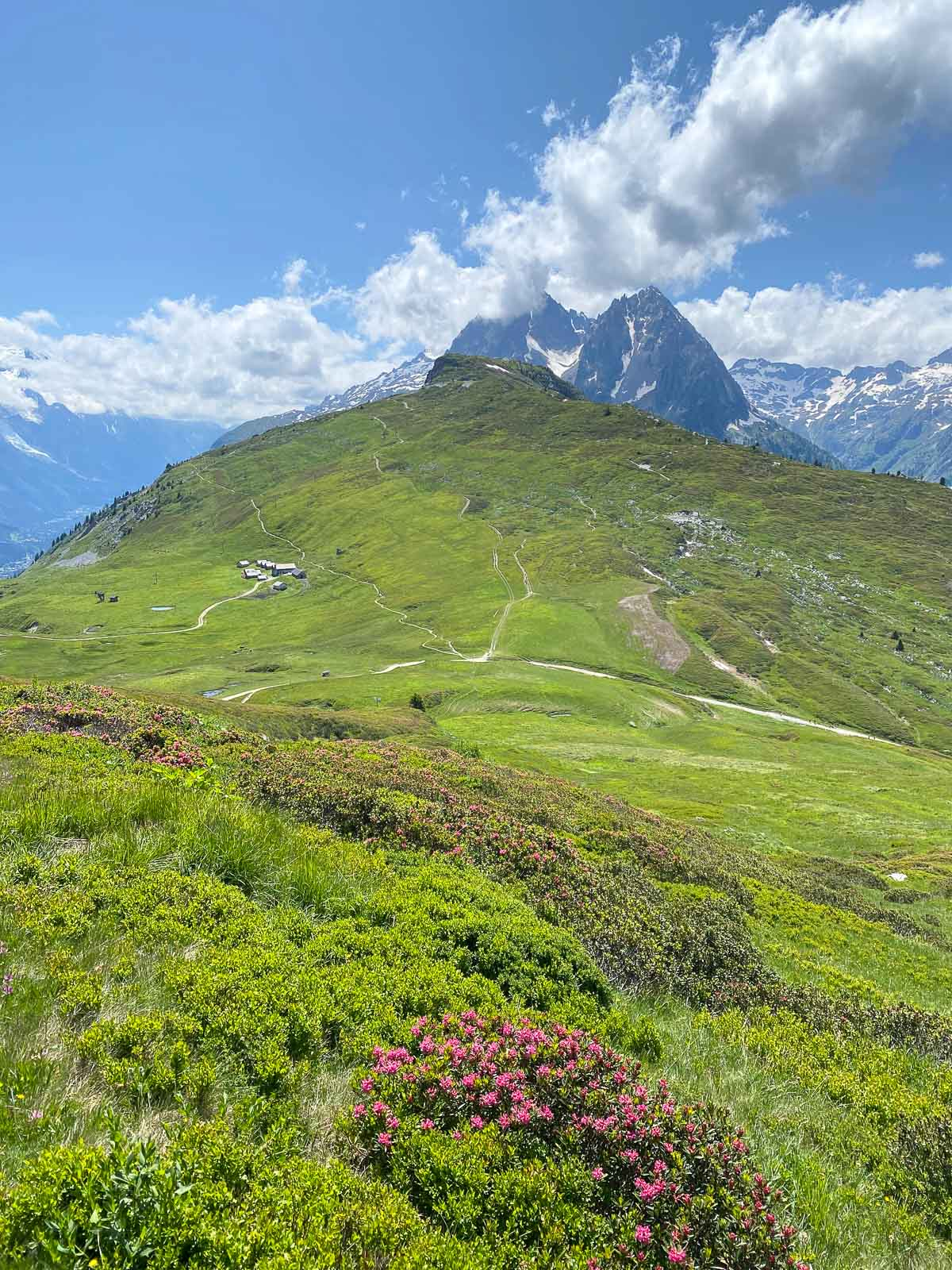 Vertical landscape photo of the Alpine meadows and mountain peaks near Le Tour, France.
