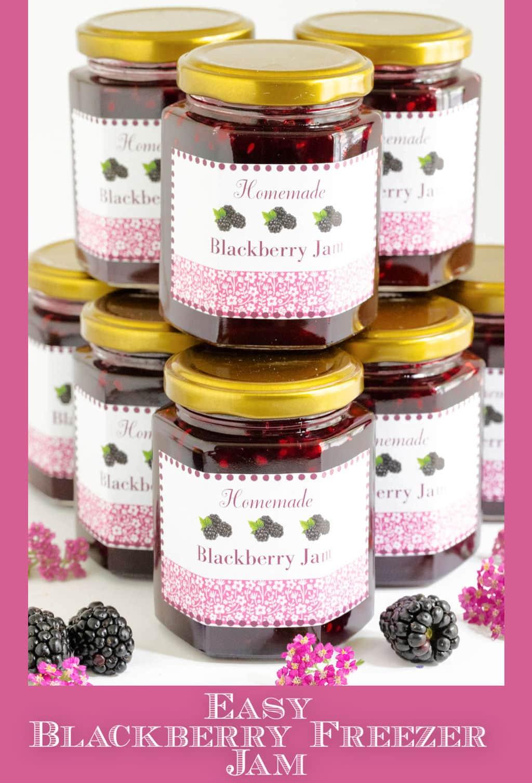 Easy Blackberry Freezer Jam (no canning skills needed!)