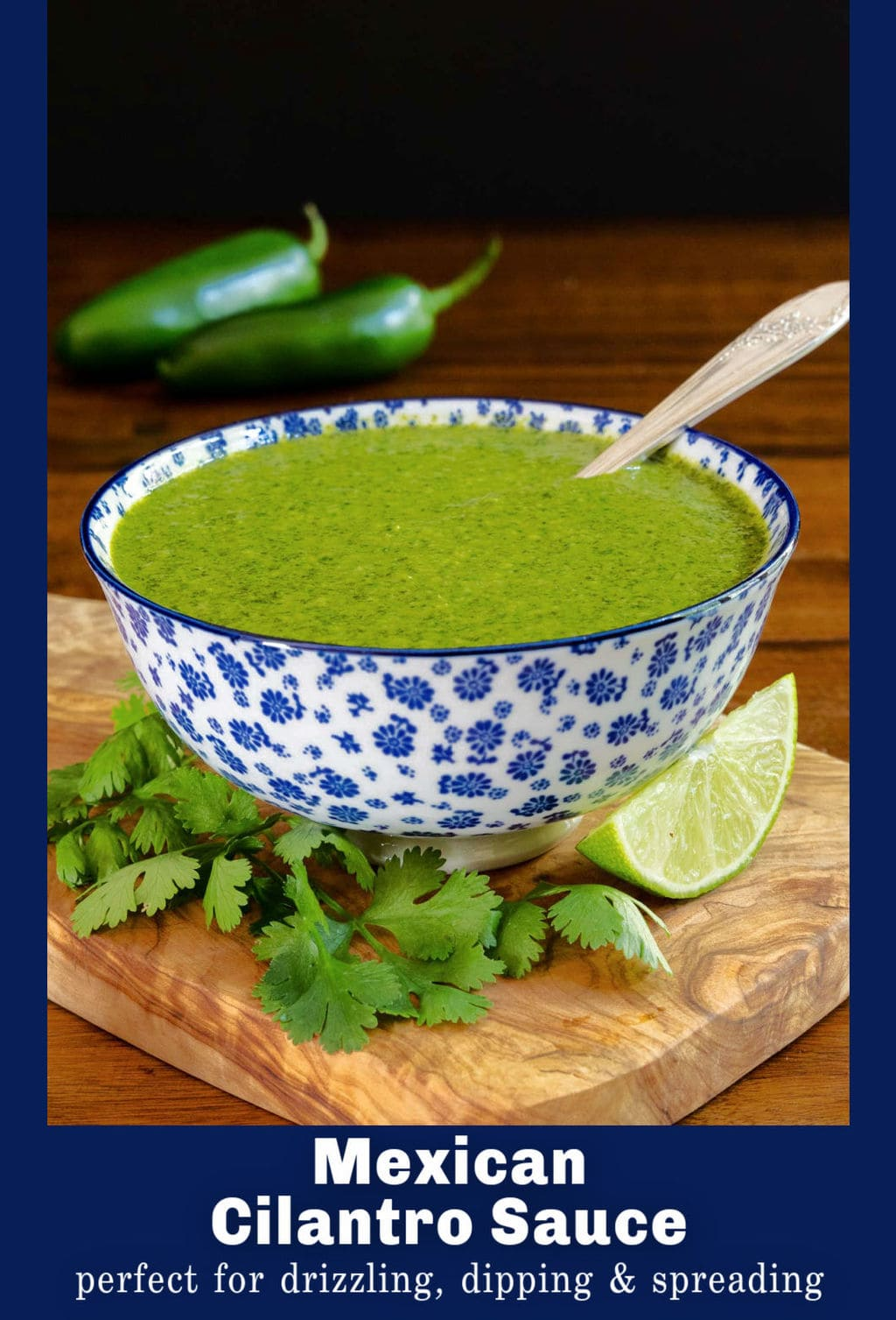 Mexican Cilantro Sauce (perfect for drizzling, dipping and spreading!)