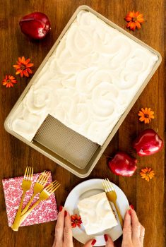 Vertical overhead photo of a Ridiculously Easy Applesauce Cake in a sheet pan with a slice cut out on an individual serving plate.