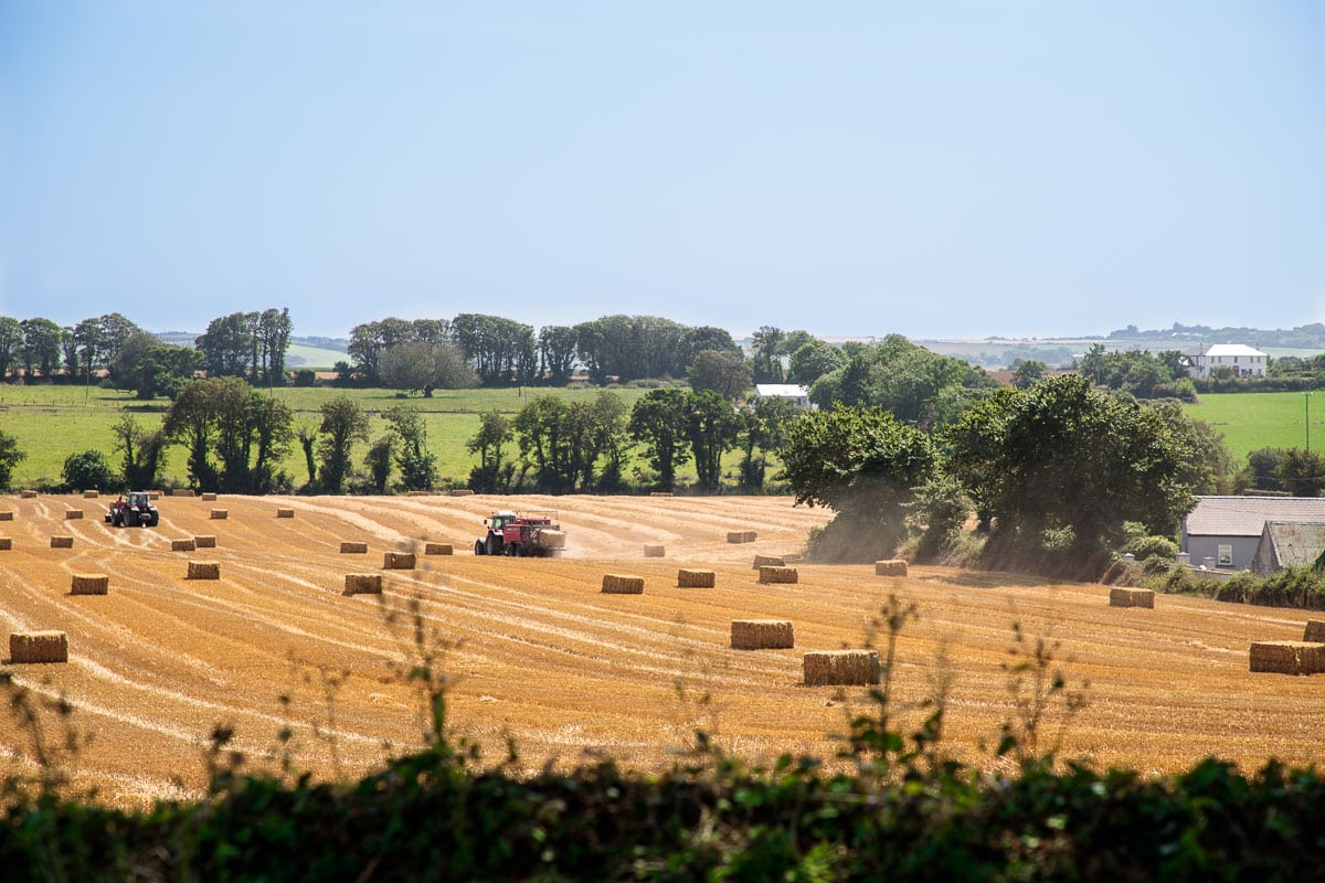 Photo of farmer's fields being harvested around the Ballymaloe Cookery School in East Cork, Ireland.