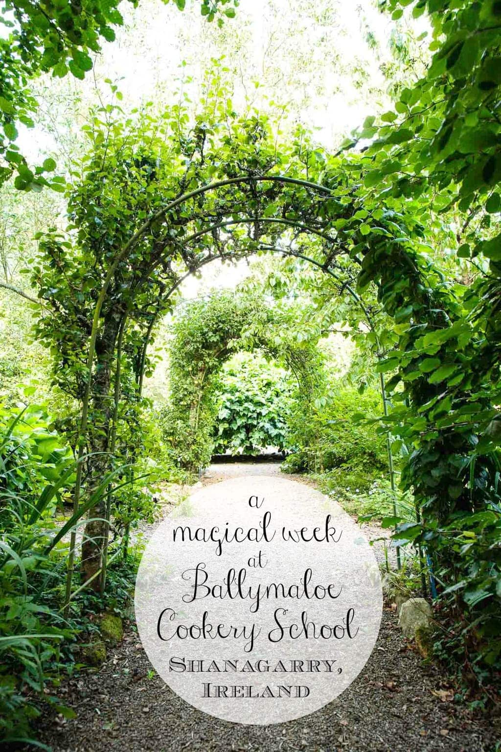 Photo of the vegetable and flower gardens at Ballymaloe Cookery School.