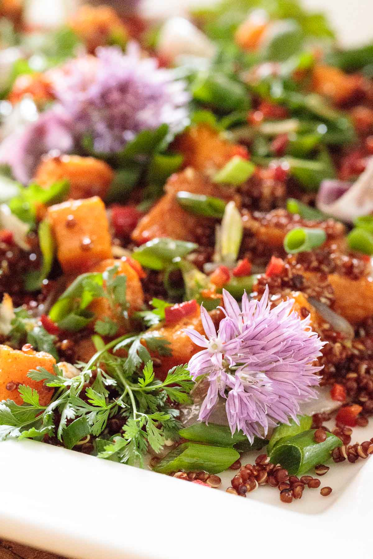 Ultra closeup of a Ballymaloe Quinoa Sweet Potato Salad garnished with chive flowers.