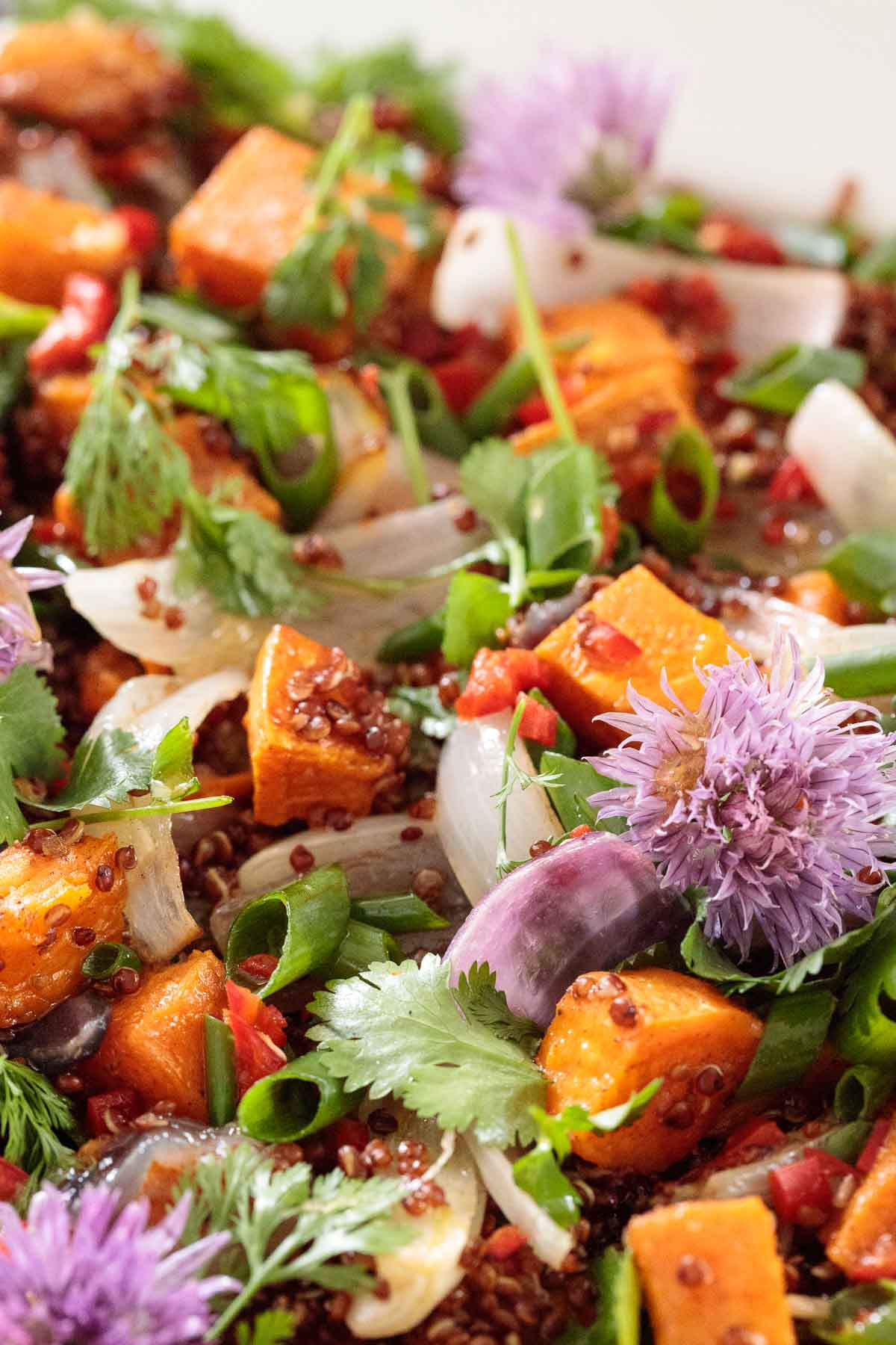 Super closeup photo of a Ballymaloe Quinoa Sweet Potato Salad.
