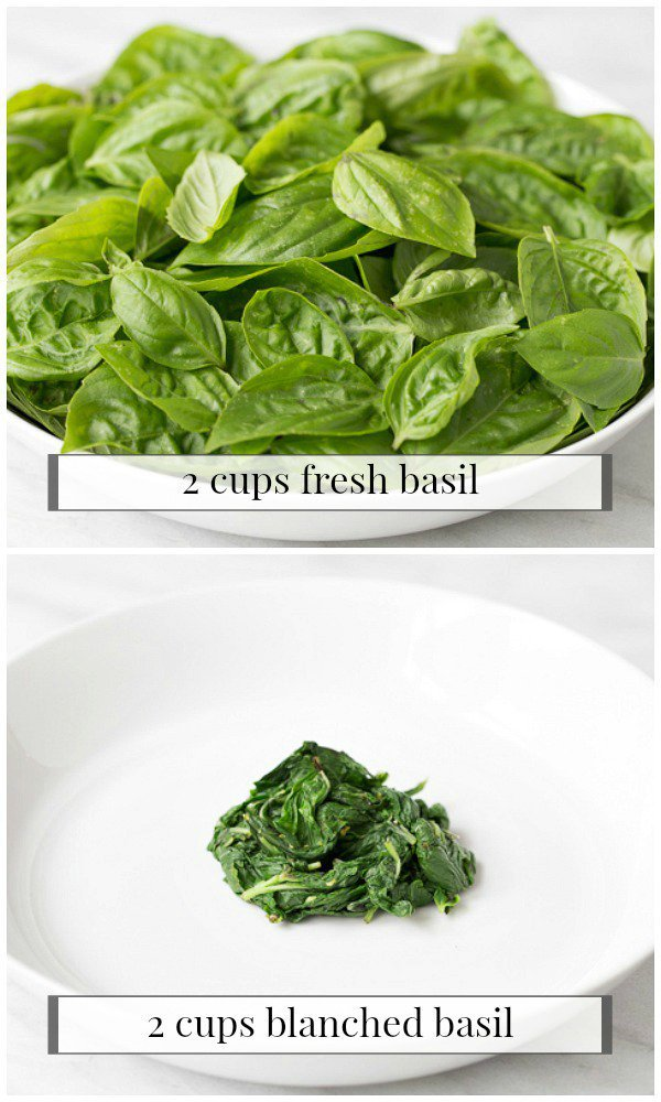 Photo collage of a bowl of Fresh Basil vs Blanched Basil.