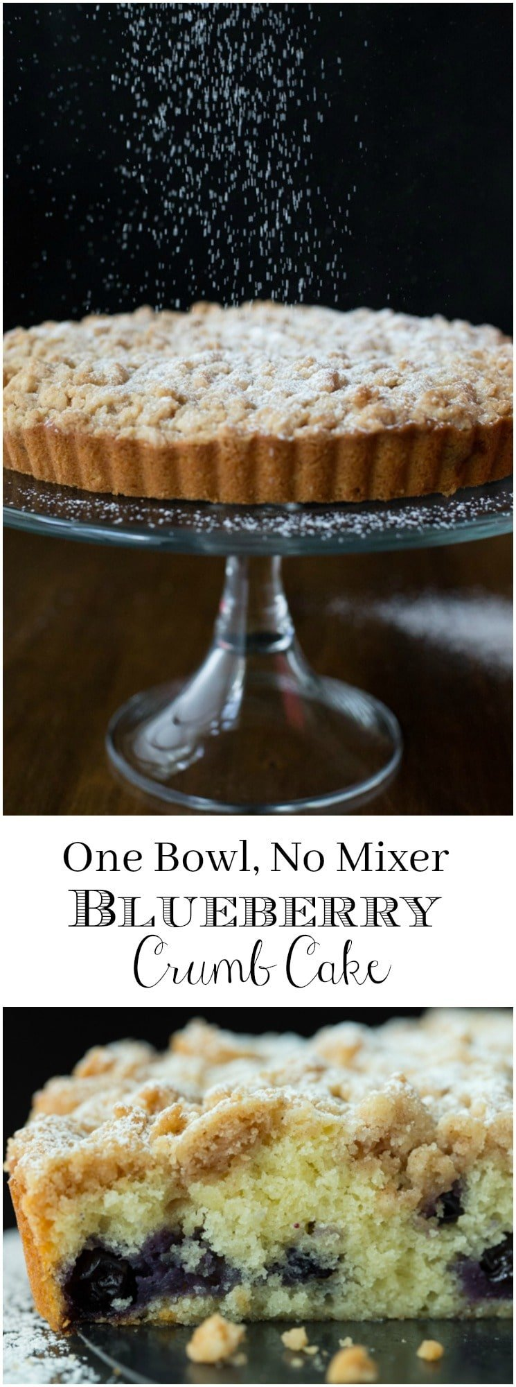This moist, tender Blueberry Crumb Cake is easy to make (no mixer required) and it's so delicious. Everyone who tries it goes crazy!