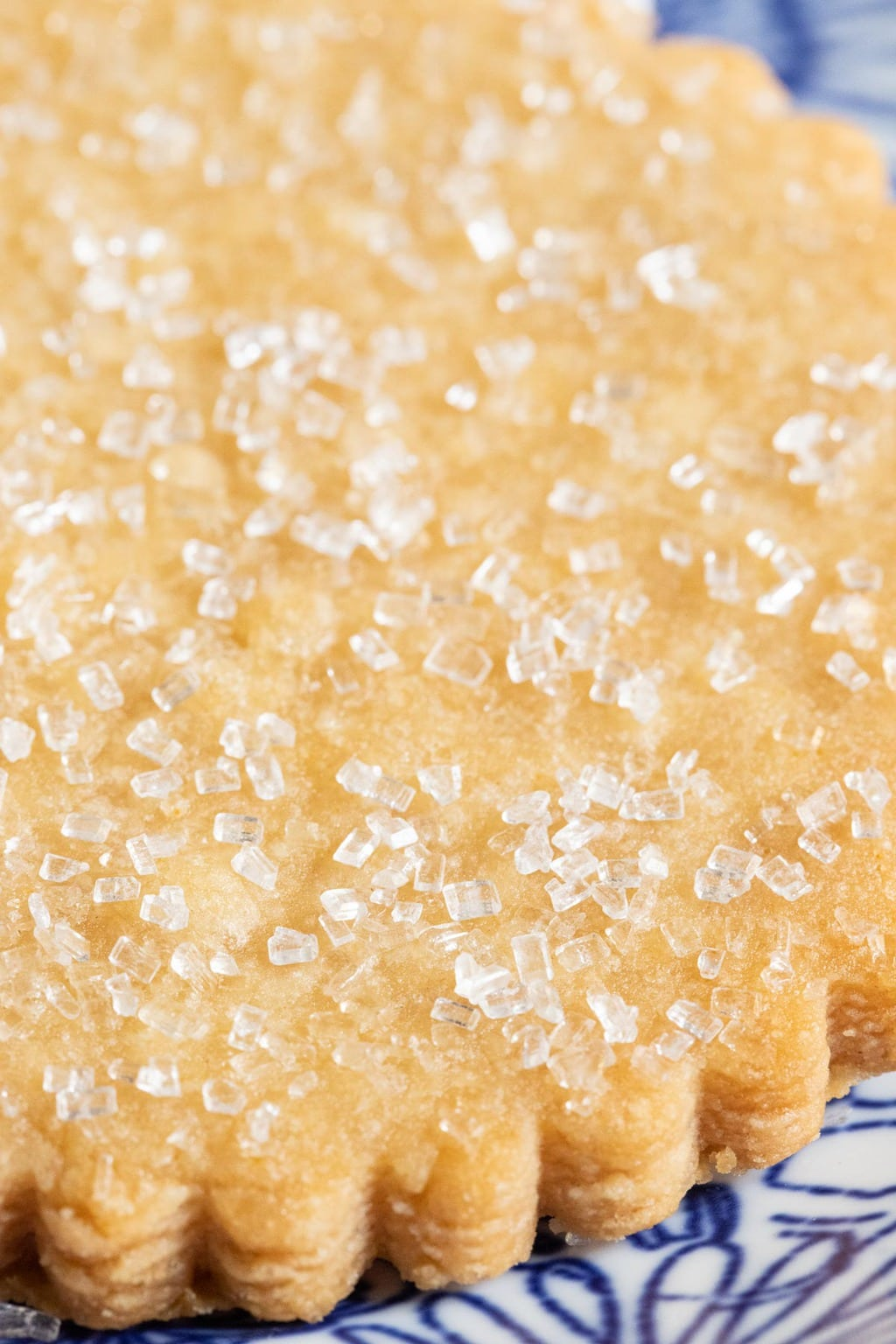 Vertical extreme closeup photo of the sugared top of a Brown Sugar Honey Shortbread Cookies.