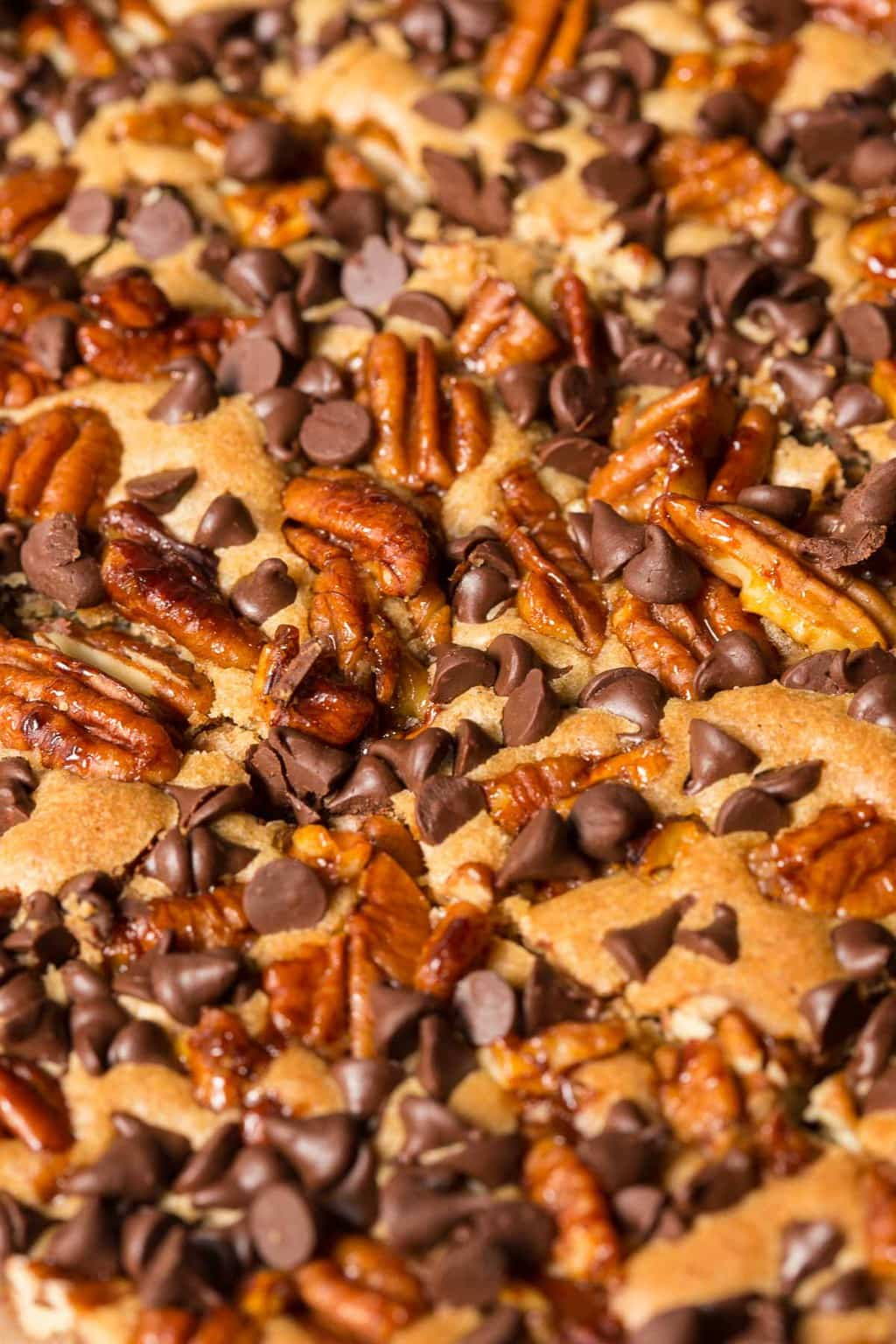 Super closeup photo of a pan of Candied Pecan Brown Butter Blondies.