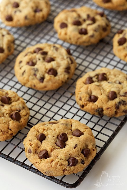 Chocolate Chip Cookie Trivia Facts