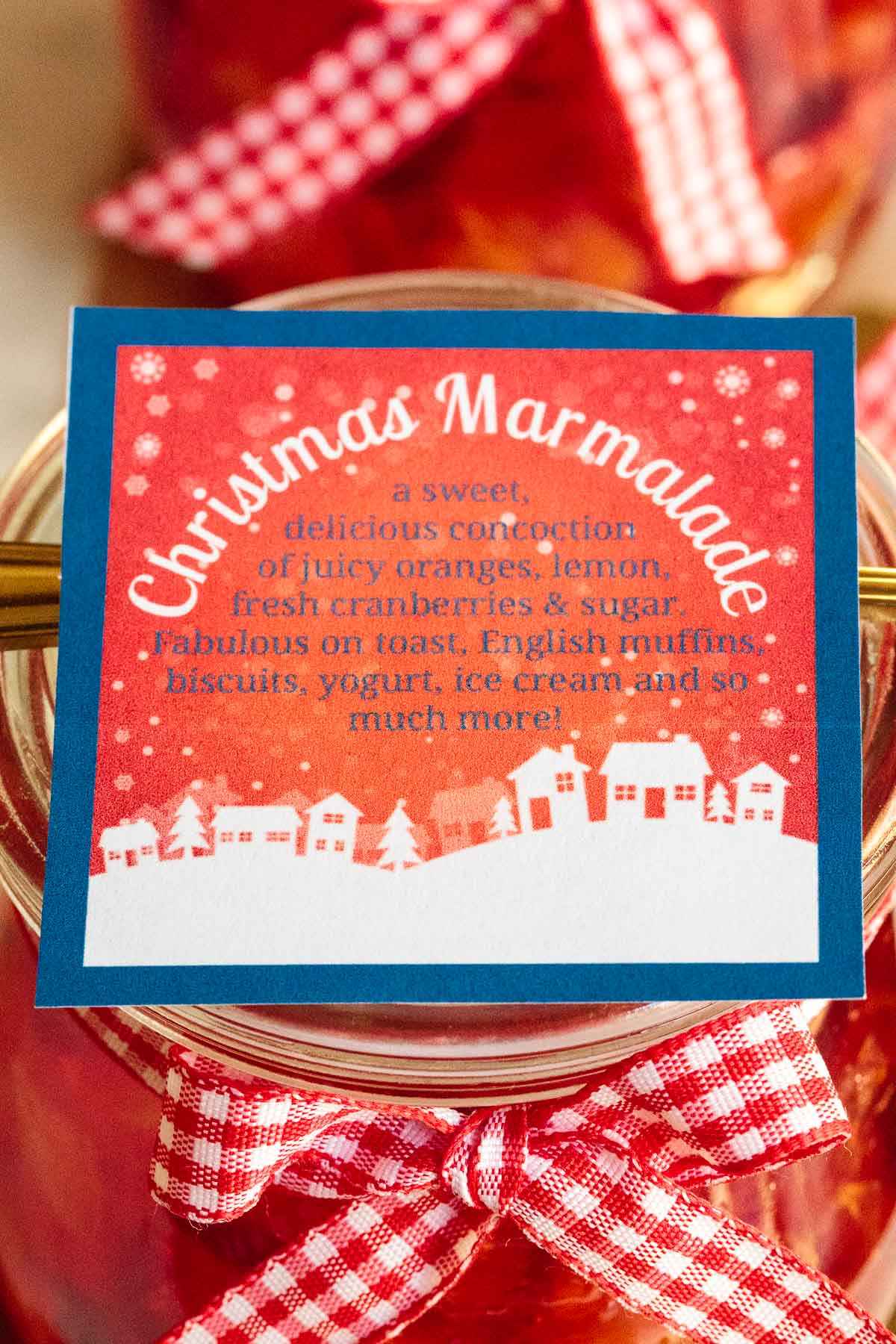 Ultra closeup photo of the label for Easy Orange-Cranberry Christmas Marmalade.