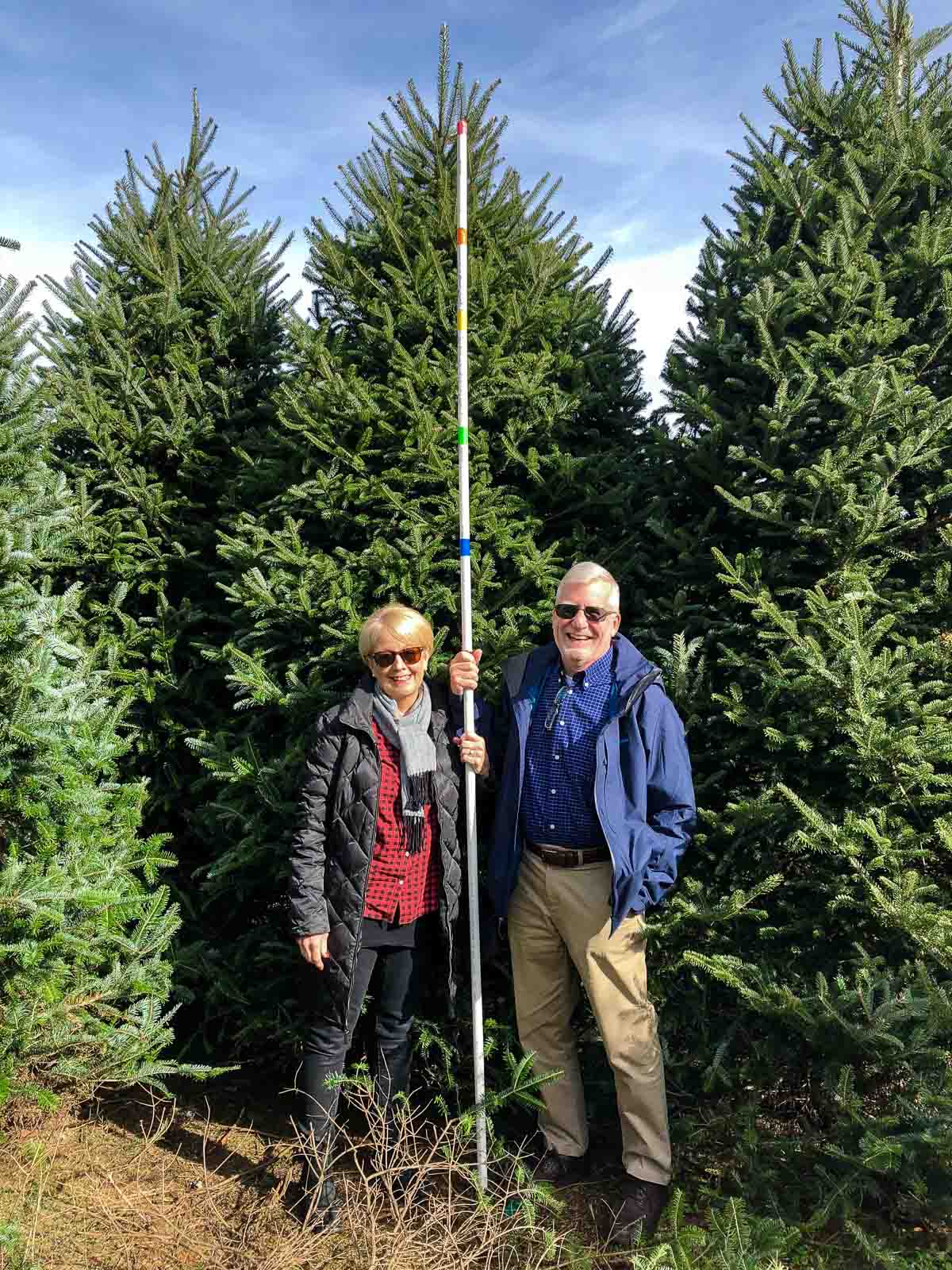Photo of Chris and Scott from The Café Sucre Farine.com selecting a Christmas tree.