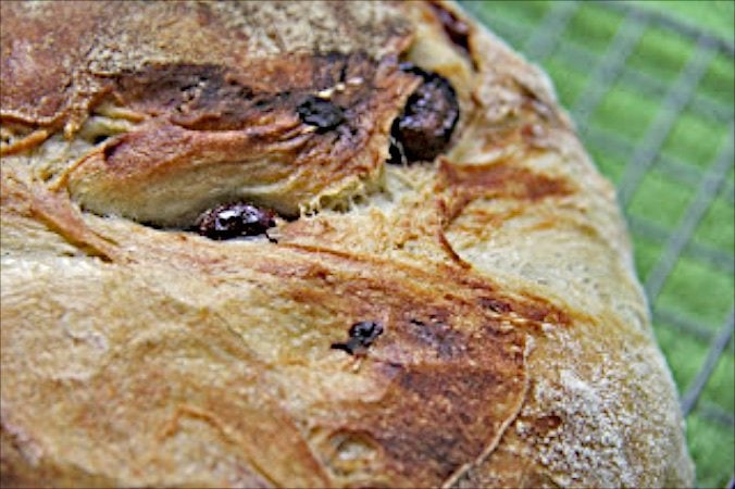 Cranberry Pecan Five Minute Artisan Bread - An amazingly simple way to have delicious, crisp European-style crusts and tender insides in a homemade bread!