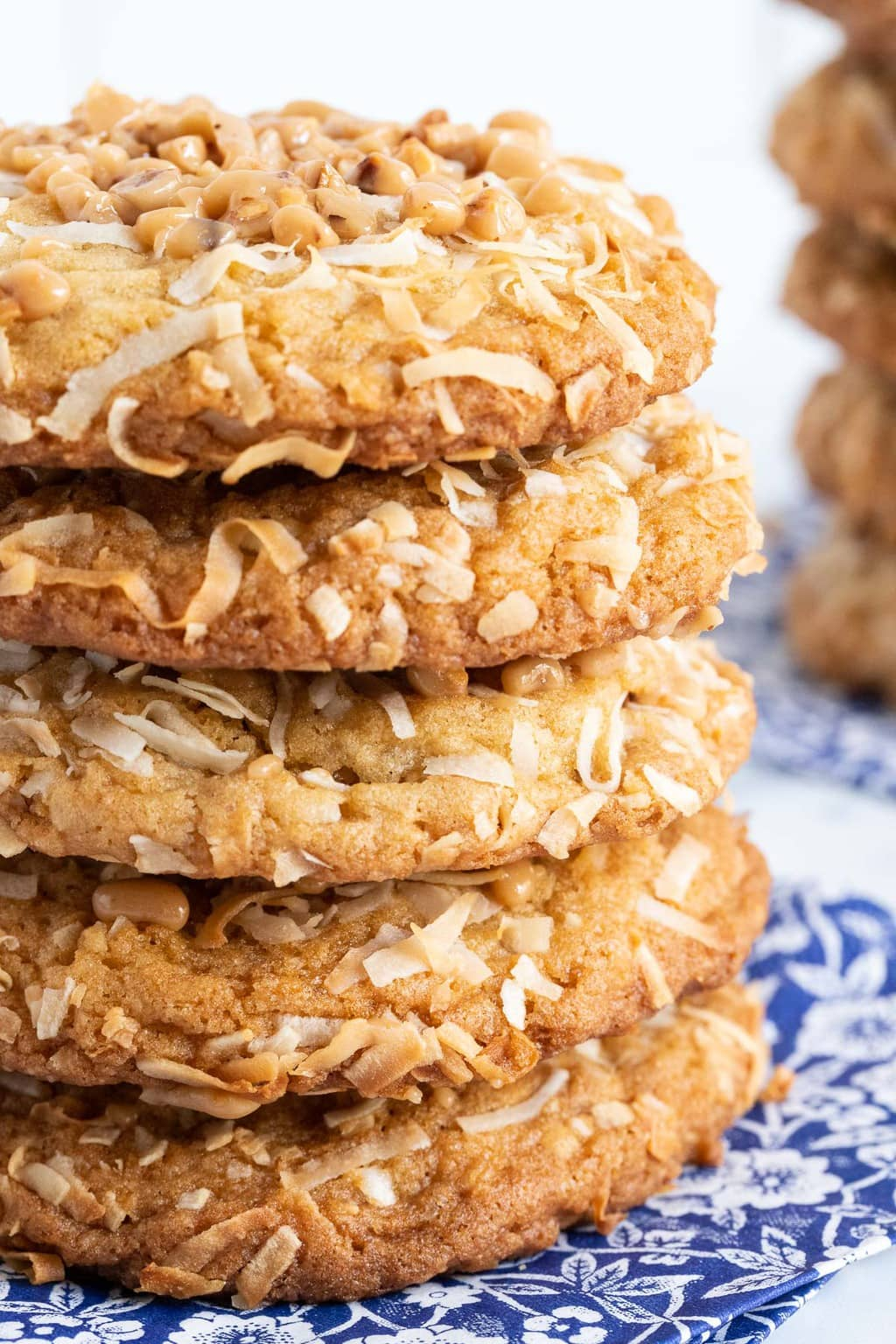 Extreme closeup vertical photo of a stack of Crispy Chewy Carolina Coconut Cookies.