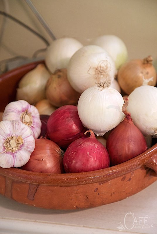 Cuisine de Provence - onions and garlic