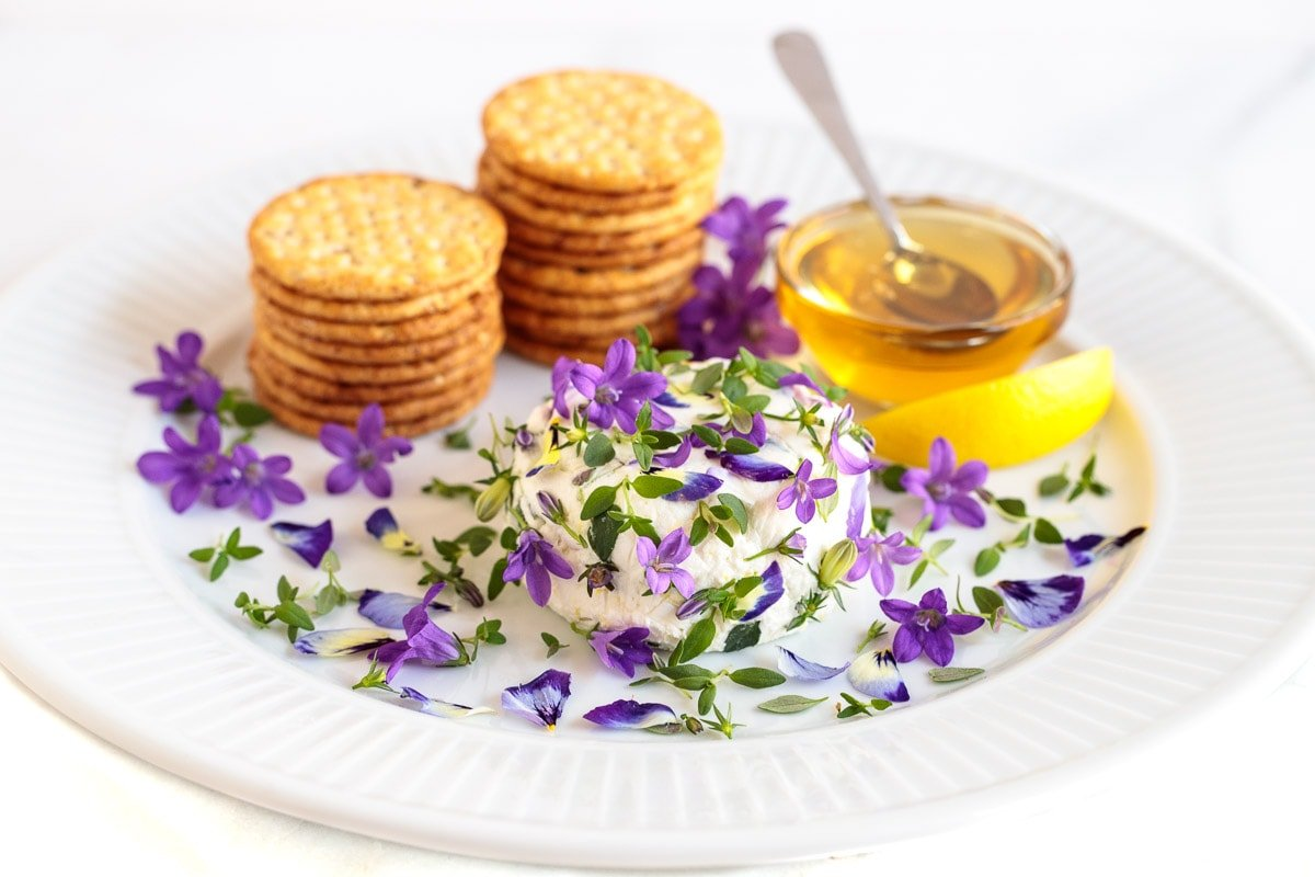 Photo of a white appetizer plate featuring an Easy Goat Cheese Appetizer and decorated with edible flowers, petals, blossoms and buds. Stacks of crackers and a dish of honey are in the background.