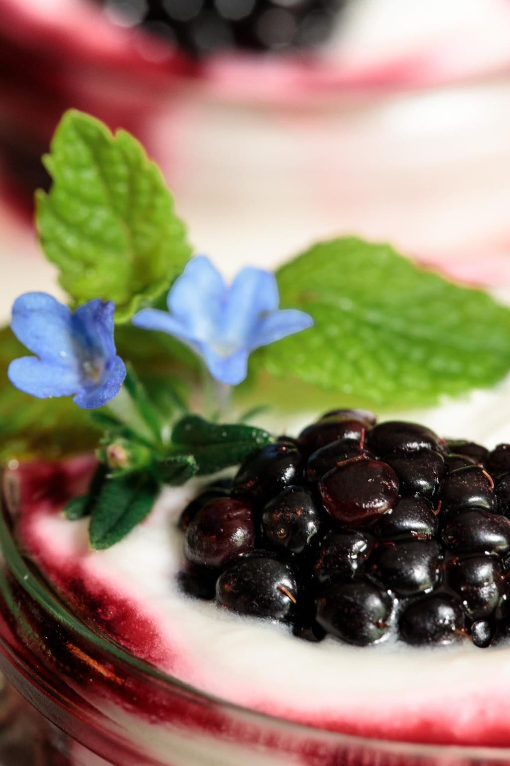 Extreme closeup photo of the top of an Irish Blackberry Fool garnished with fresh mint and decorative wildflowers.