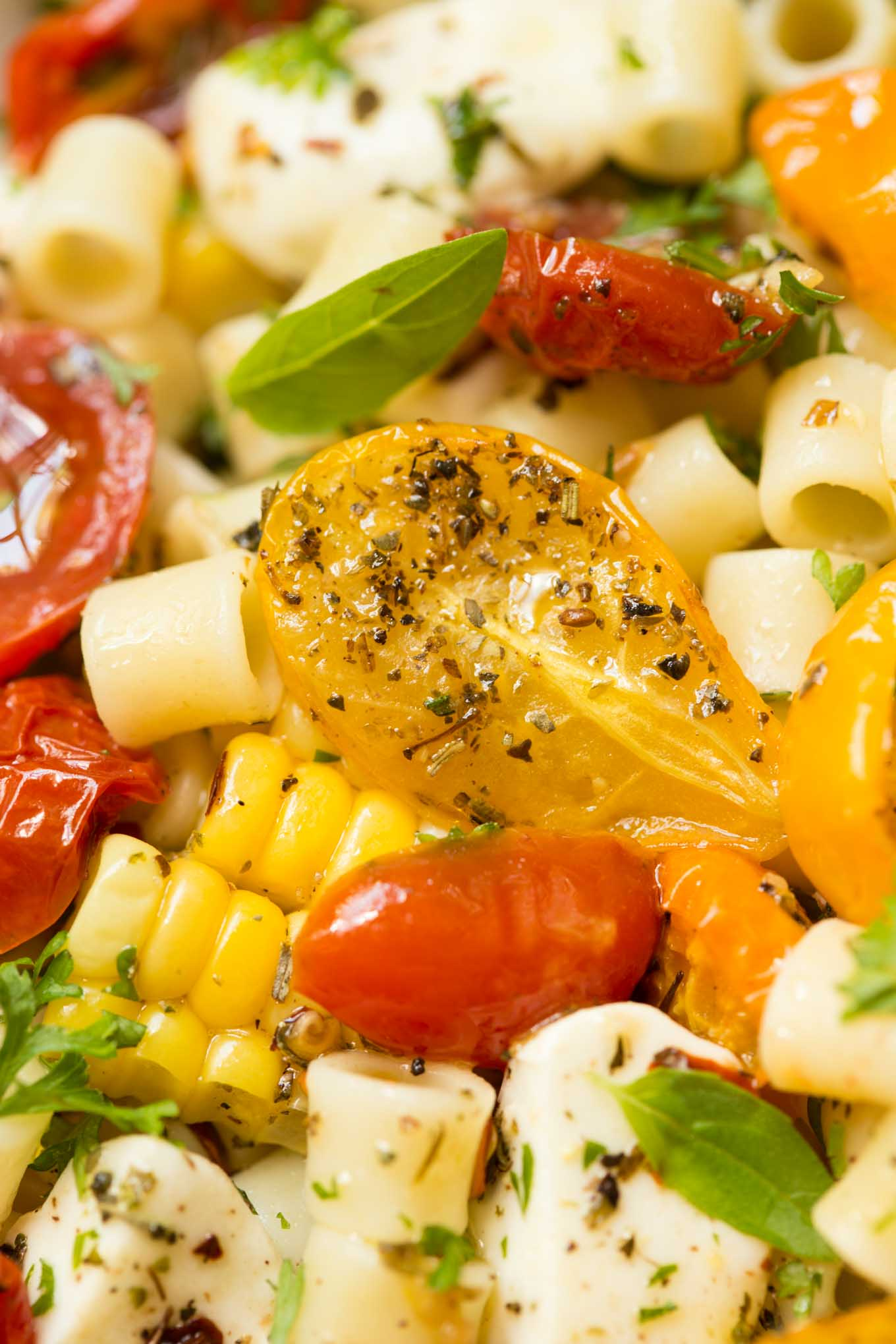 "Roasted Tomato and Fresh Mozzarella Pasta - if this delicious pasta dish could talk, it would be shouting ""summer""! All of the season's best flavors wrapped up in one bowl!"