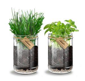 Herb Lover's Kitchen Garden Kit by Abundant Living.