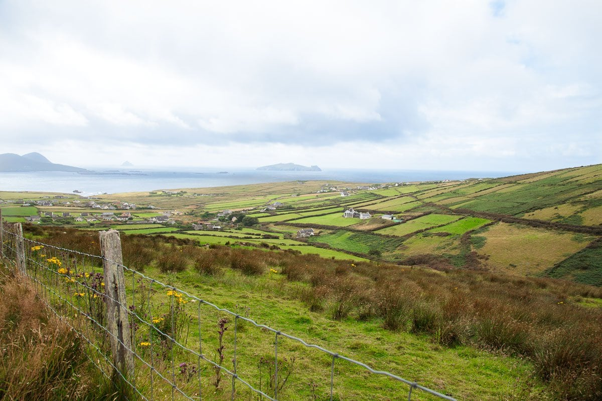 Photo of farmland in the Dingle Peninsula in Ireland.