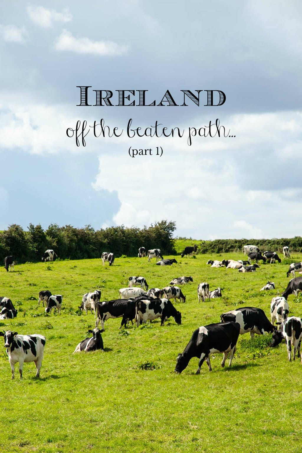 Highlights of a three week trip to Ireland; not all the quintessential tourist destinations, but fun, fascinating, beautiful beyond description. Come join us, The Café in Ireland, Off the Beaten Path! #ireland, #irelandtravel, #travelinireland, #irelandoffthebeatenpath