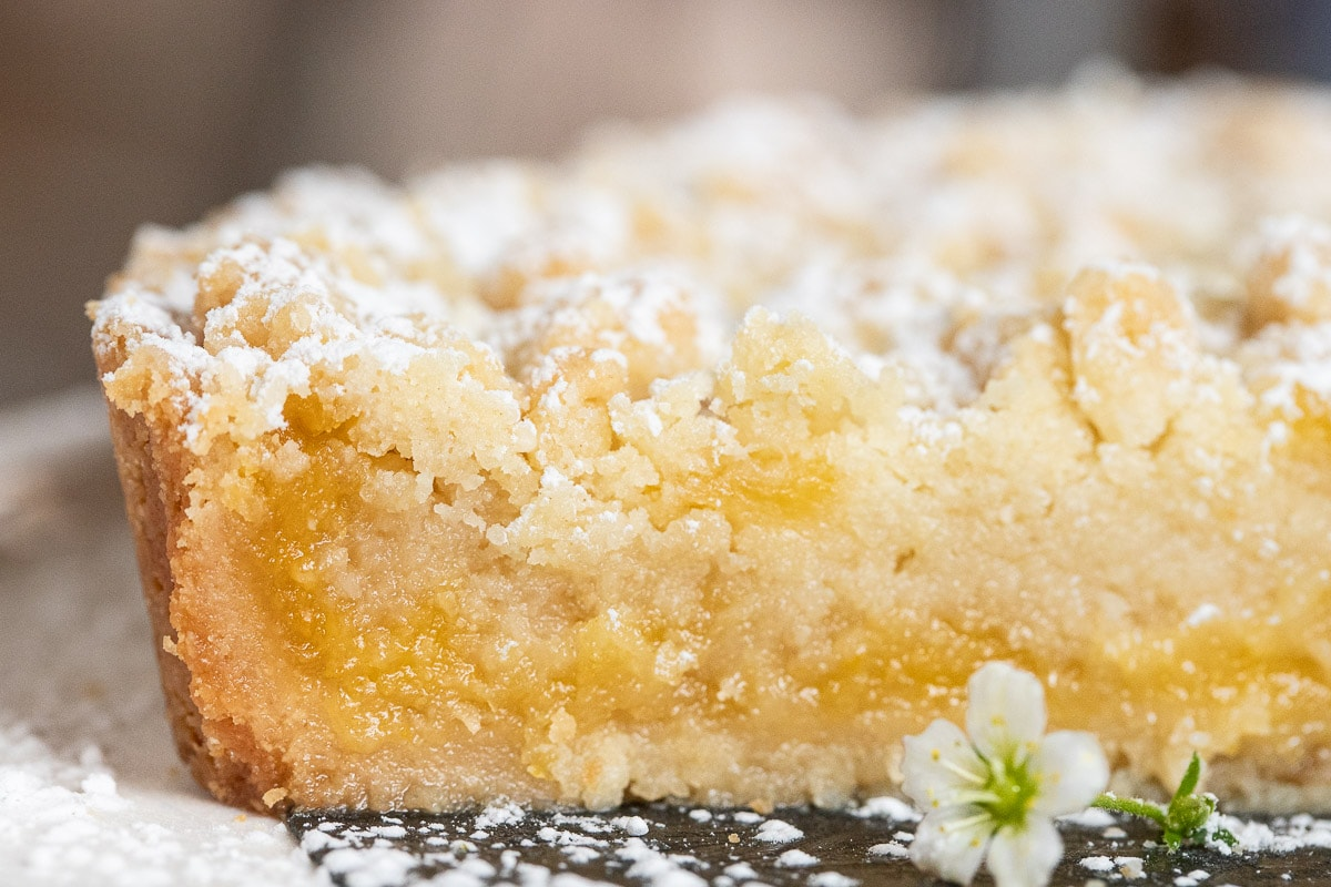 Ultra closeup photo of the inside of a Lemon Curd Shortbread Tart.