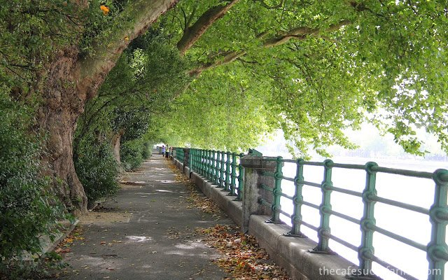 A tree lined walkway along the Thames River in London, England
