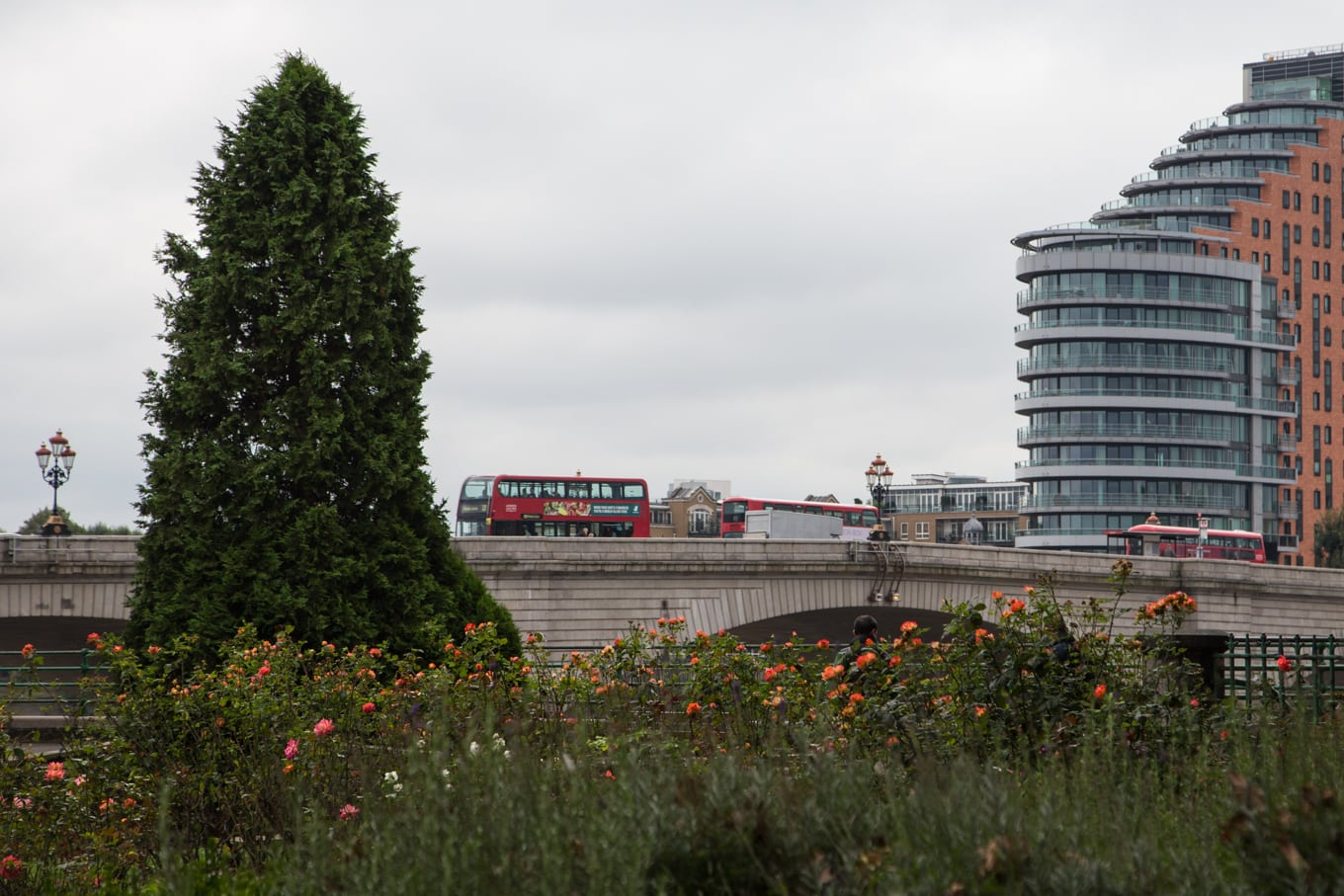 Photo of red London transportation buses passing over Putney Bridge, London, UK.